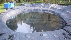 Budidaya Ikan Jangka Panjang dengan Kolam Geomembrane