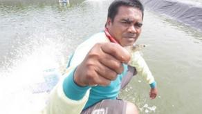 Udang Air Tawar Hindarkan Manusia dari Ancaman Schictosomiasis