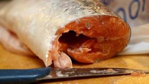 Mengelola Ikan Menjadi Pupuk Organik untuk Tanaman