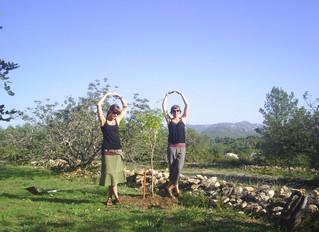 Planting the pomegranate