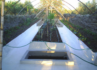 Building an irrigation system in the Ark
