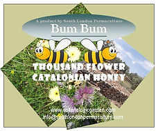 Bum Bum honey label5.jpg