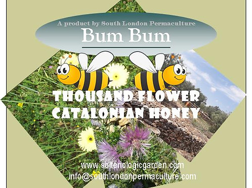 'Bum Bum' Thousand Flower Catalonian Honey