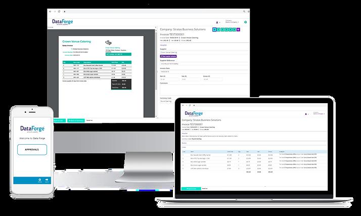 Data Forge AP Platform.png