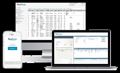 Data Forge Platform