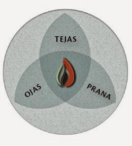 ojas,tejas and prana