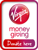 VMG donate button.png