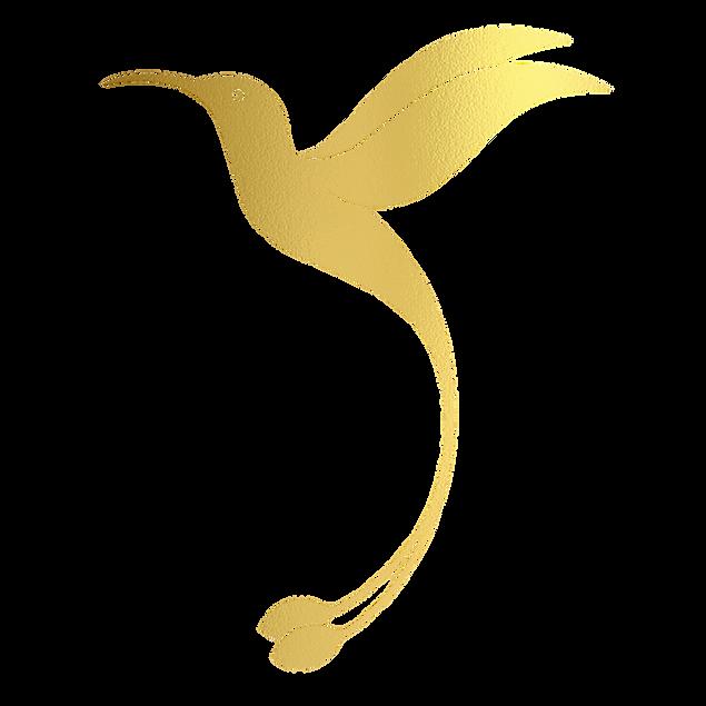 Final Logo transp@2x.png
