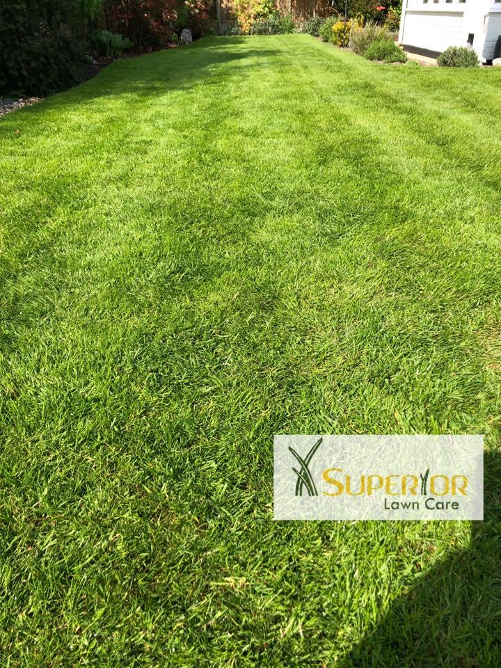 lawn care sittingbourne
