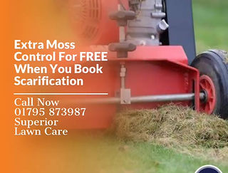 Your local Lawn treatment expect, We offer all year round lawn care service that will give you a lawn to be proud of. We cover Maidstone and Surranding areas. Prices start from as little as £15 per lawn treatment. Give yours self a weed free beautiful green lawn. Sheppey, Sittingbourne, Rainham.