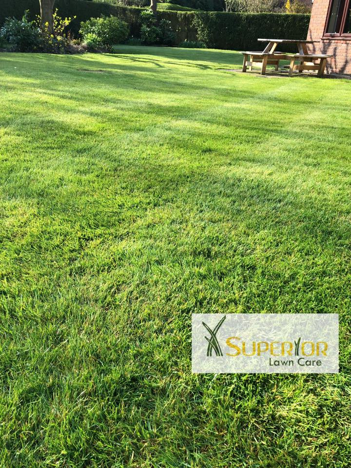 call now lawn care service