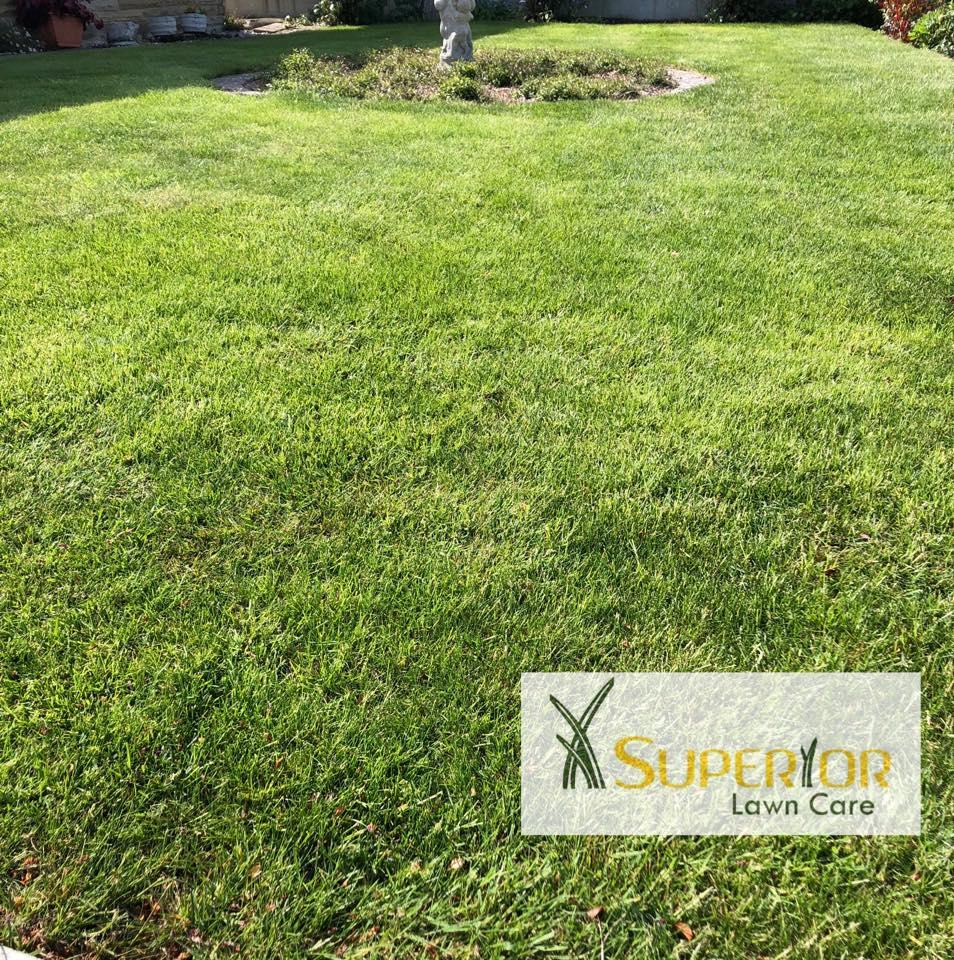 kent lawn care service