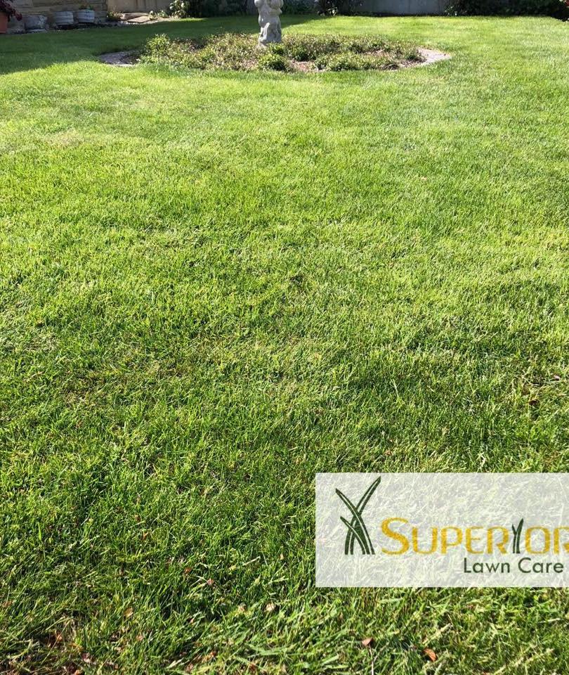sittingbourne lawn care