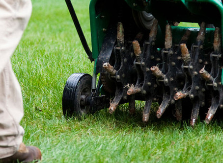 Hollow-Tine Aeration