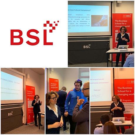 BSL collage.jpg