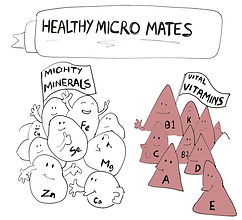 micro mates.jpg
