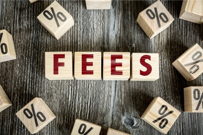 fees for international business payments