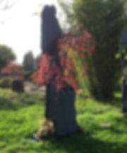 eérable du japon acer garnet sur roche