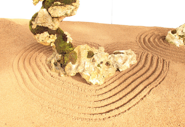 dragon stone details