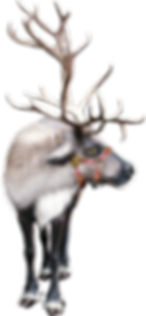 kisspng-reindeer-santa-claus-clip-art-ch