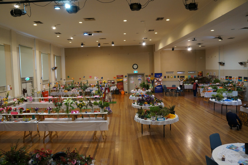 Horticulture Show 2019 - 42 of 65.jpeg