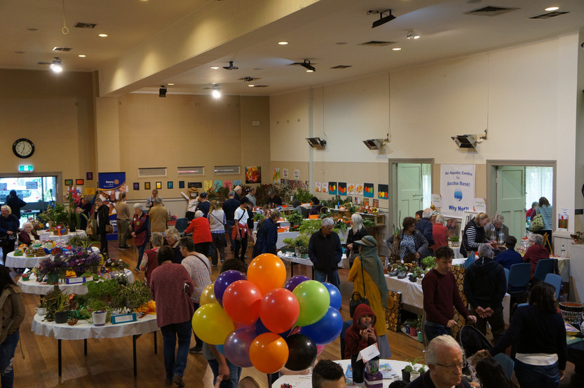 Horticulture Show 2019 - 47 of 65.jpeg