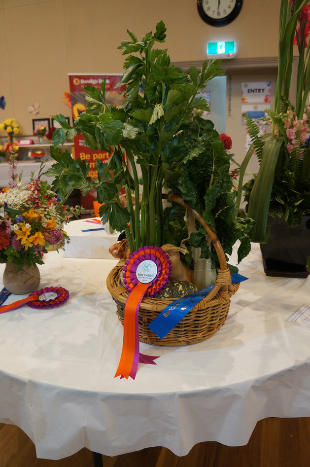 Horticulture Show 2019 - 33 of 65.jpeg