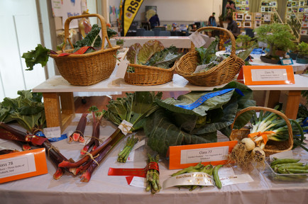 Horticulture Show 2019 - 40 of 65.jpeg
