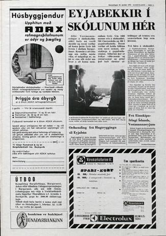 þjodviljinn28.1.1973_bls5.jpg