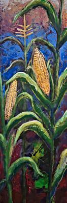 Corn - Gray Artus