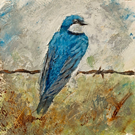 Bluebird 1 of 2 - Gray Artus