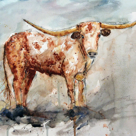 Longhorn in watercolor