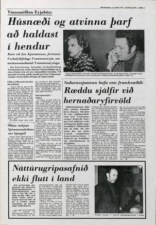þjodviljinn31.1.1973_bls3.jpg