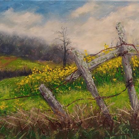 Spring NC Landscape