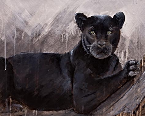 Black Panther - Gray Artus