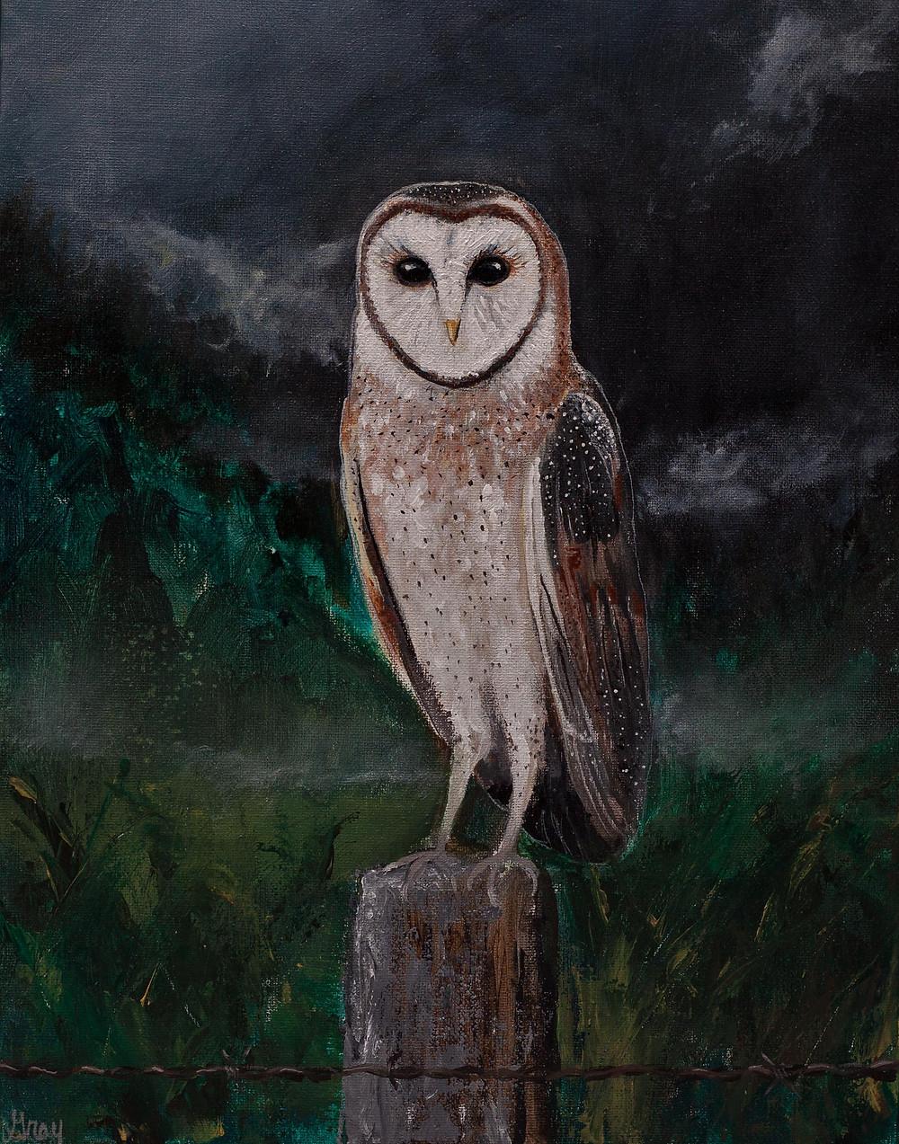 Barn Owl at Dawn by Gray Artus