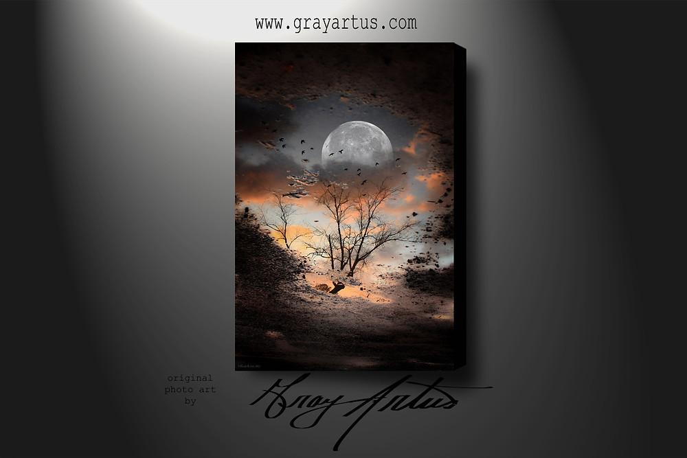 Moon reflection.jpg