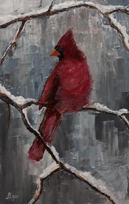Cardinal - Gray Artus