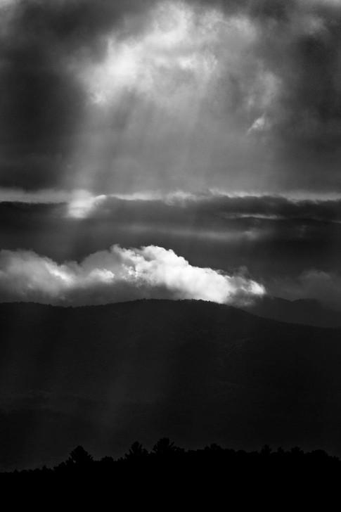 Sunrays - Gray Artus