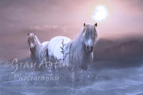 Beautiful Morning - Gray Artus
