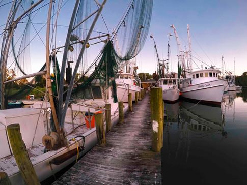 Sneads Ferry NC - Gray Artus