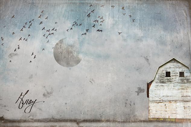 December - Photo composite by Gray Artus