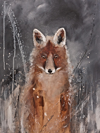 Red Fox - Gray Artus