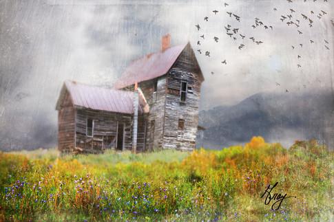 Farm House - Photo composite by Gray Artus