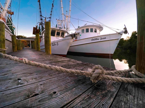 Anchor Bend - Gray Artus