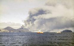 Halkion að veiðum við eldstöðvarnar