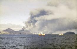 Halkion og fl. að veiðum við eldstöðvarnar