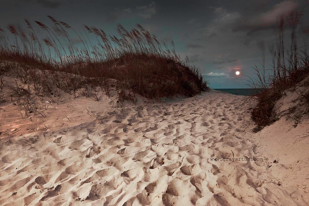 Topsail Beach21 2014small.jpg