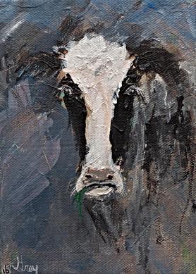 Holstein - Gray Artus