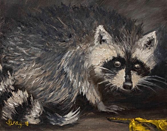 Racoon - Gray Artus